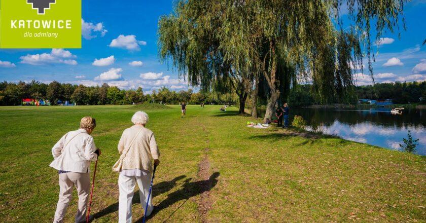 Blisko ćwierć miliona złotych na działania dla katowickich seniorów