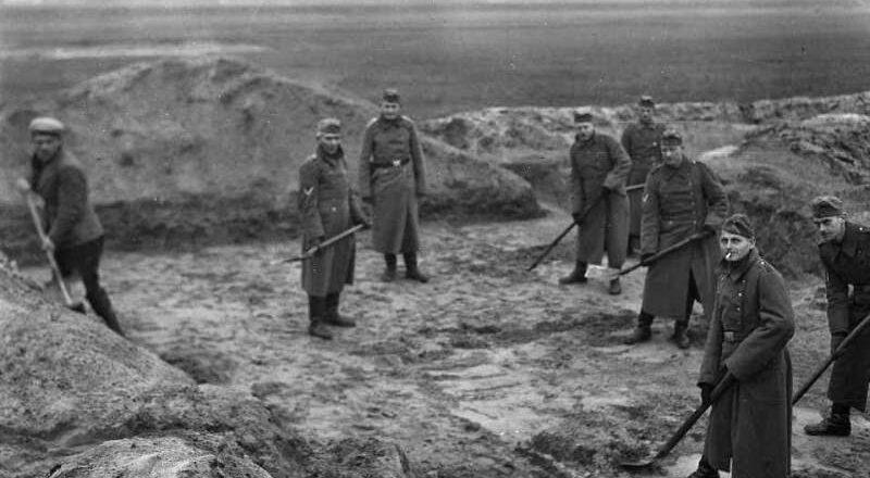 Wehrmacht, groby i uczeni